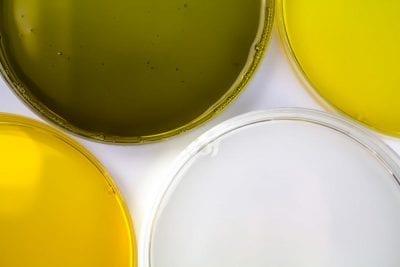 ansigtsolie sensitiv hud Naturligolie rene vegetabilske olier